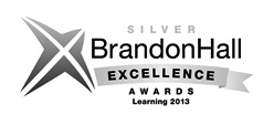 2013 Brandon Hall Excellence in Learning Awards